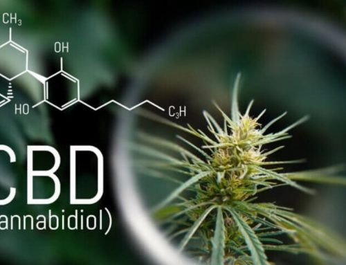 CBD Oil: How Does it Work and What are the Health Benefits?