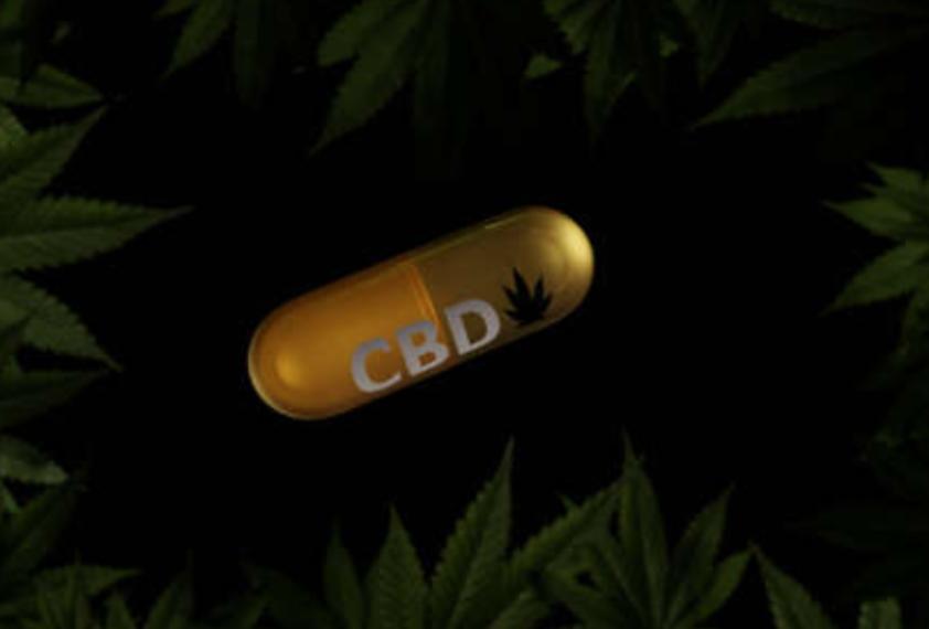 cbd for brain function